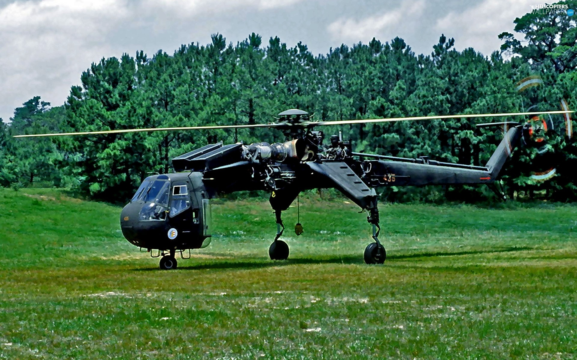 Helicopter, Sikorsky CH-54 Tarhe, carrying